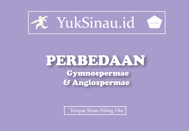 Perbedaan Gymnospermae dan Angiospermae