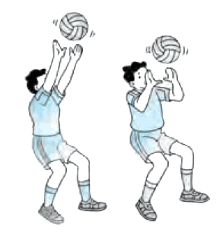 Teknik Dasar Permainan Bola Voli Dan Gambarnya Yuksinauid