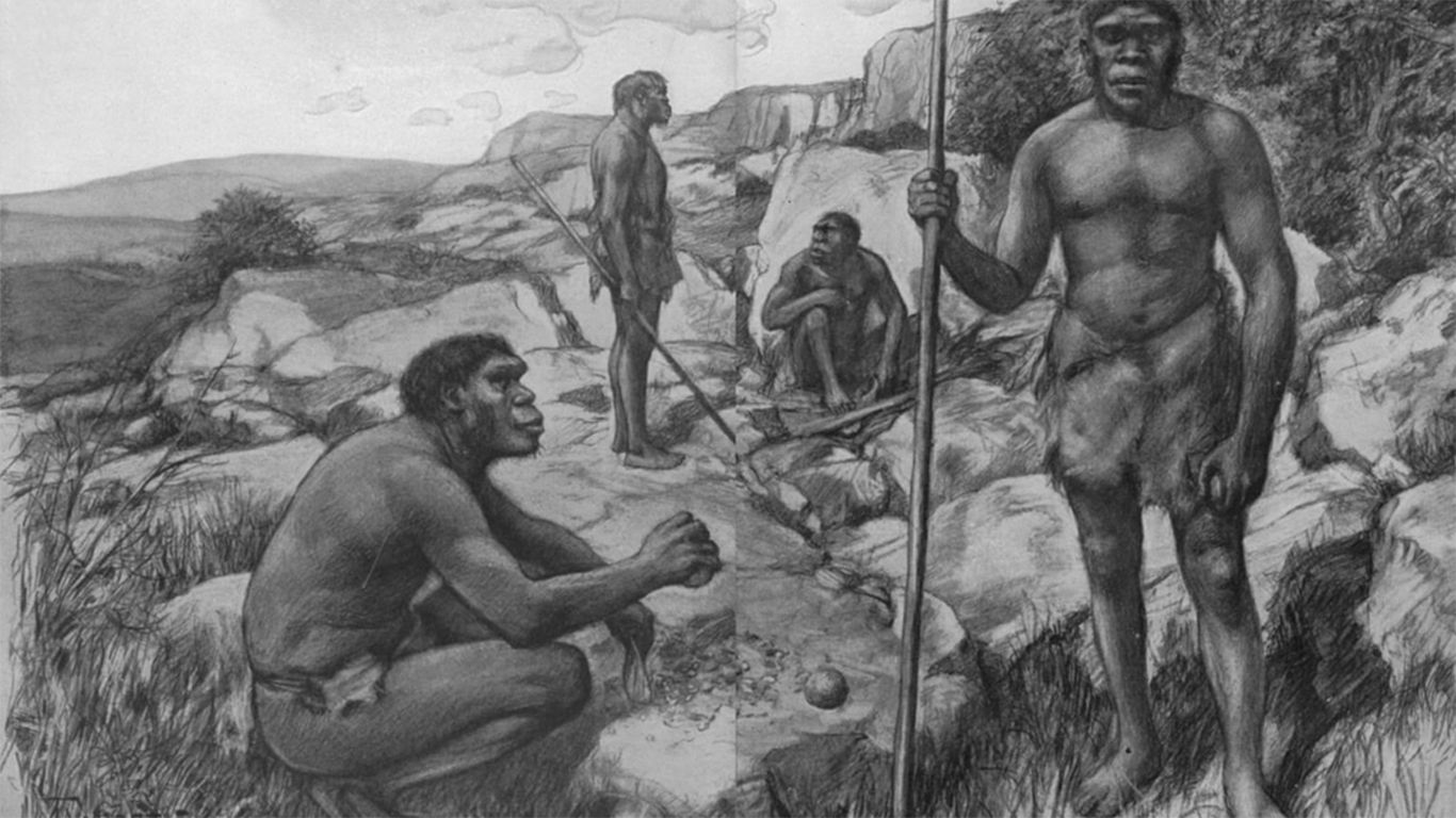 jenis manusia zaman megalitikum