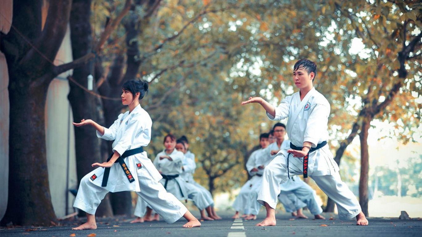aliran karate