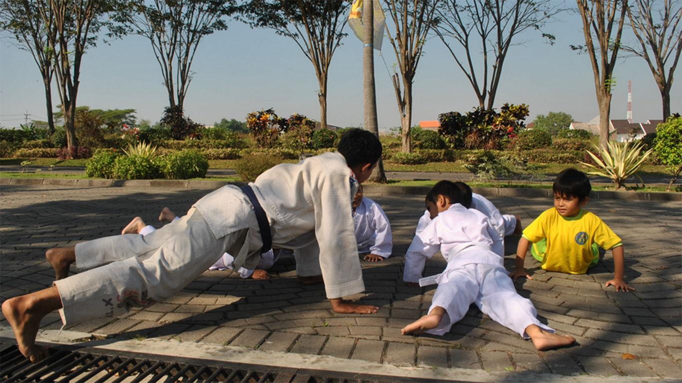 manfaat karate