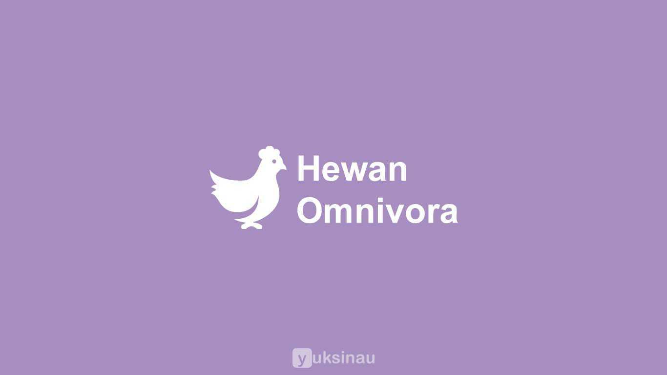 Contoh Hewan Omnivora