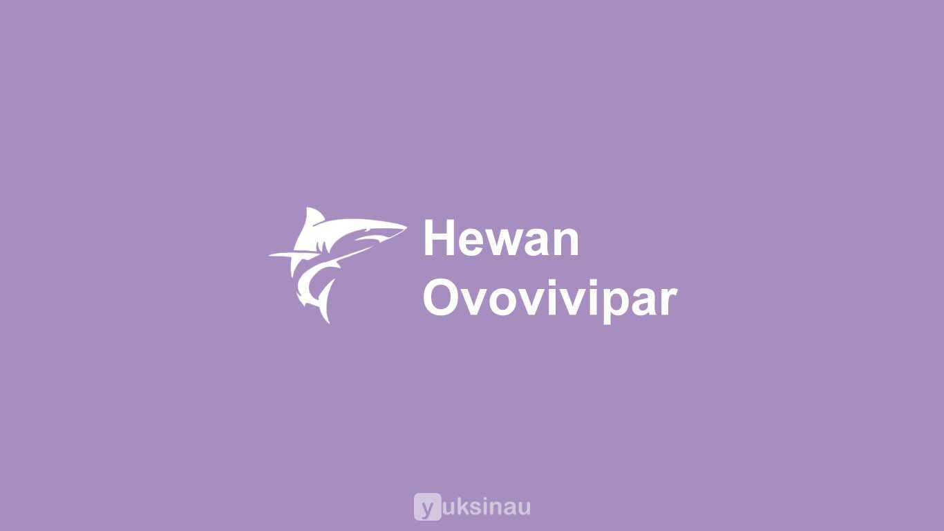 Contoh Hewan Ovovivipar
