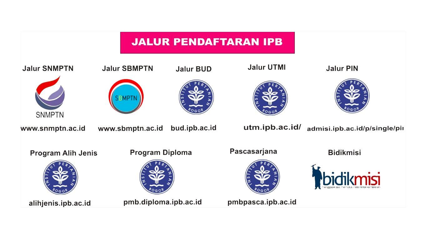 pendaftaran ipb