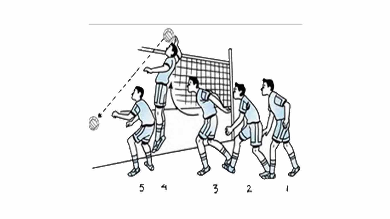 Permainan Bola Voli Peraturan Teknik Posisi Dan Sejarah