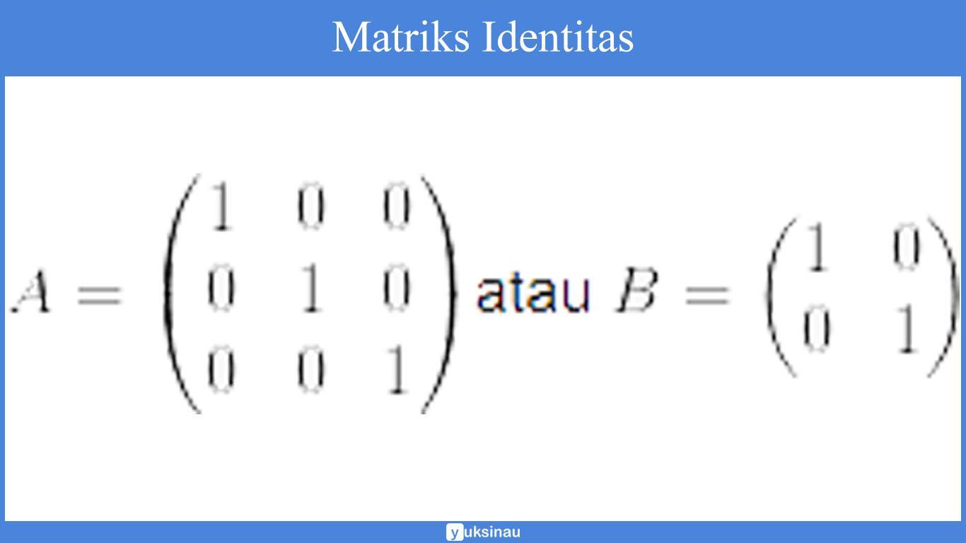 elemen matriks determinan