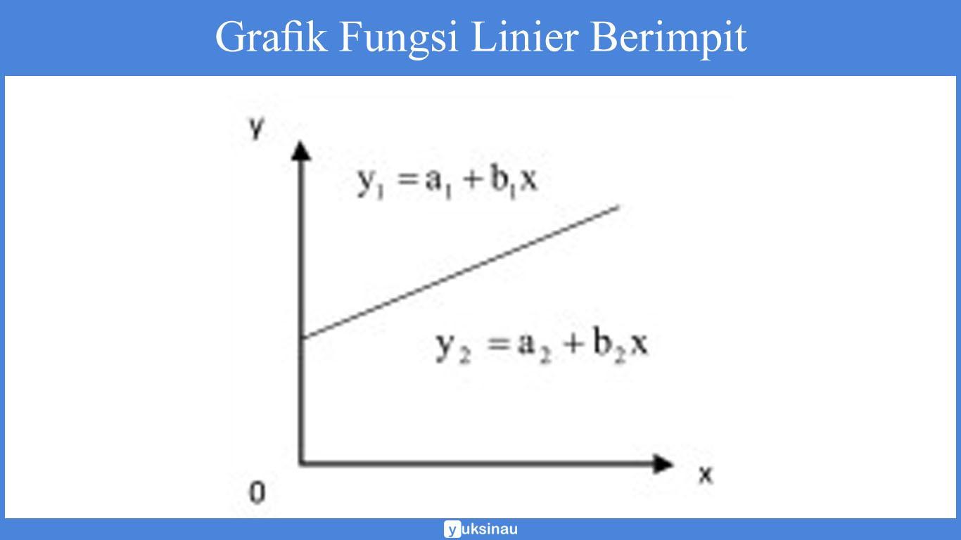 fungsi linear adalah