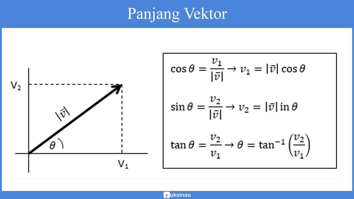 vektor sumbu positif
