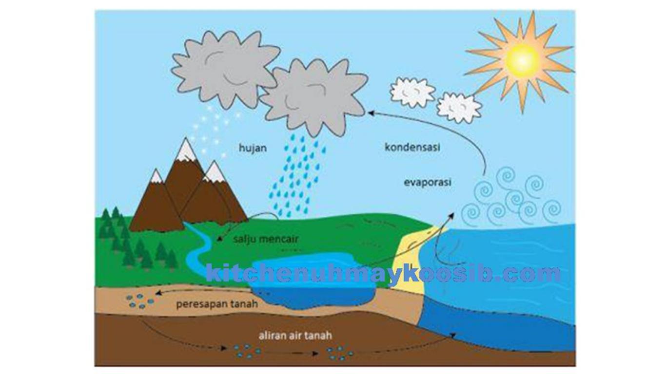 gambar siklus air pendek