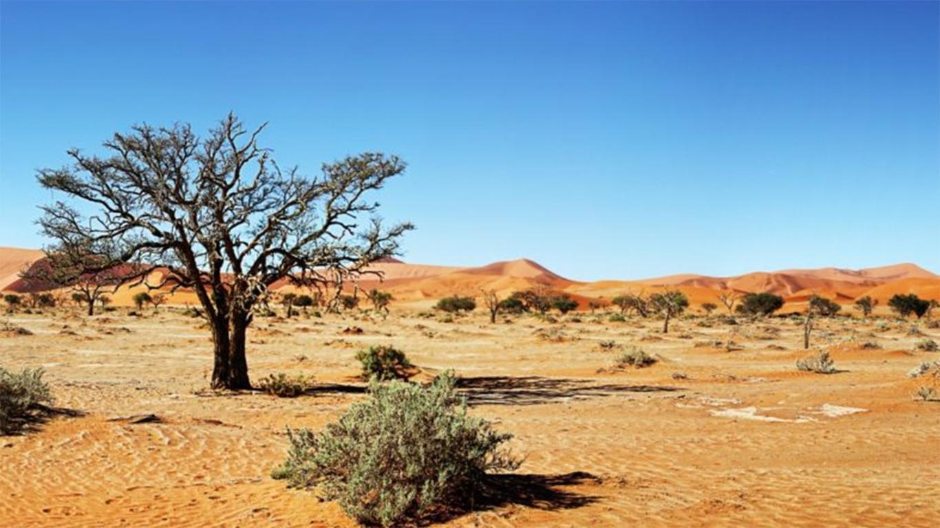 gurun