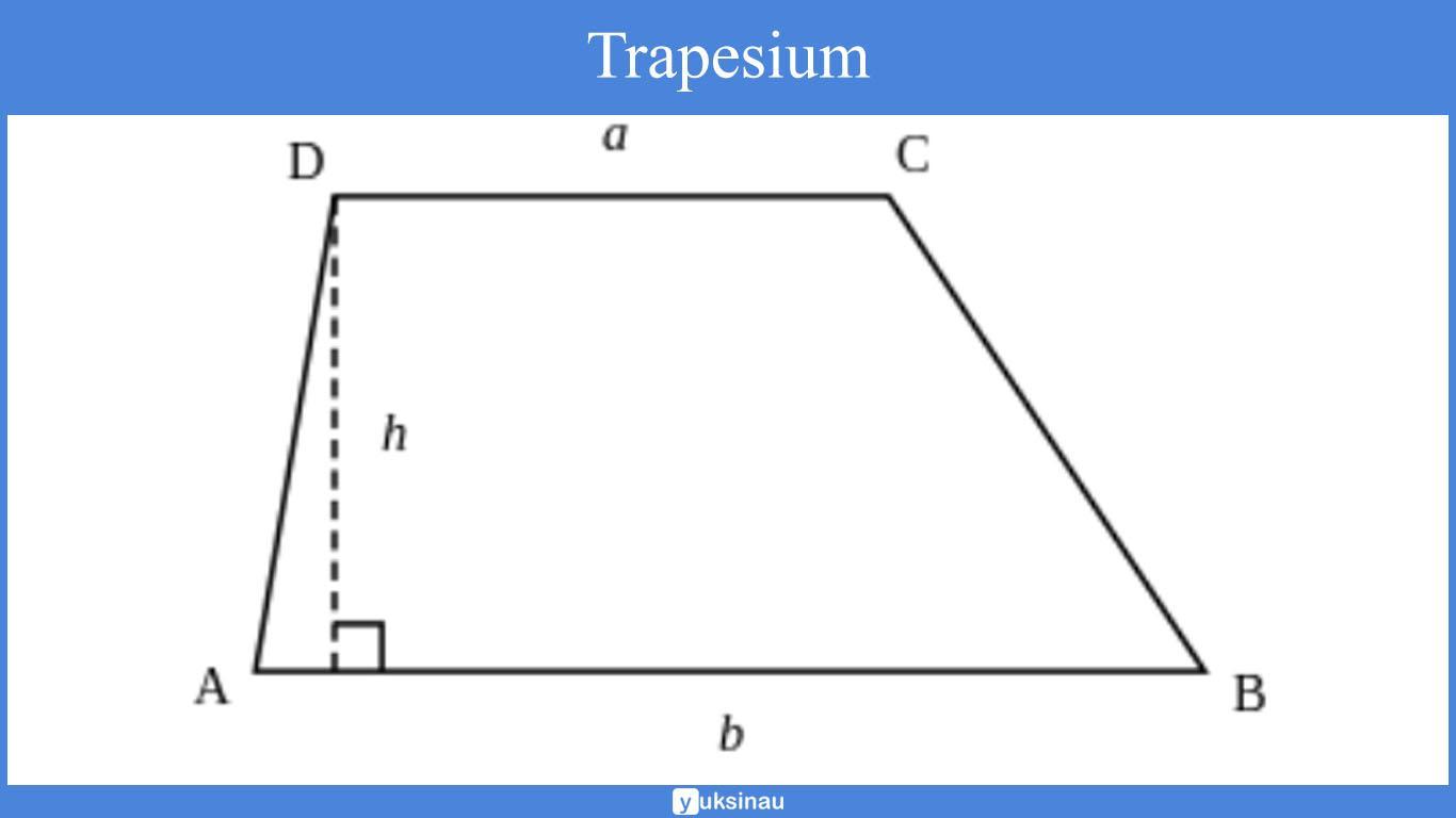 trapesium