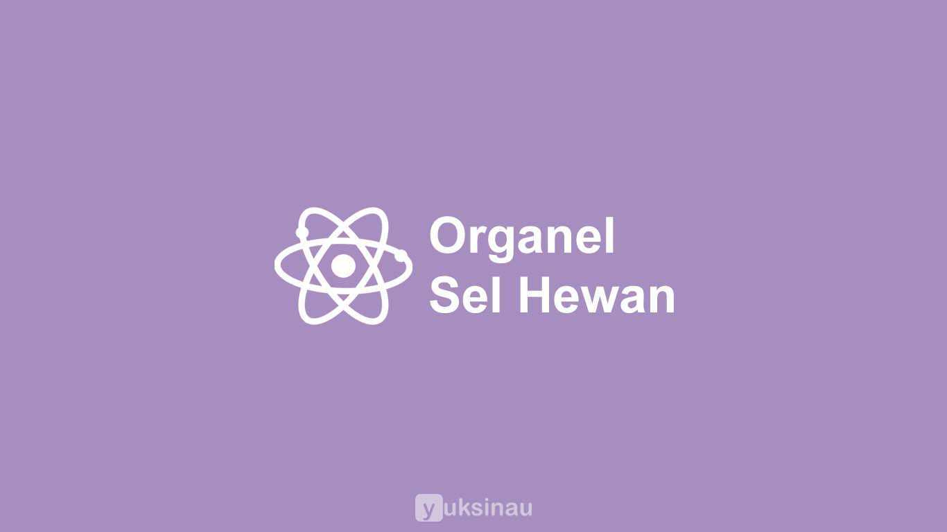 Organel Sel Hewan Fungsi Struktur Gambar Lengkap