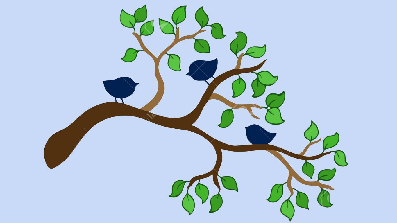 Three Birds On a Tree Branch