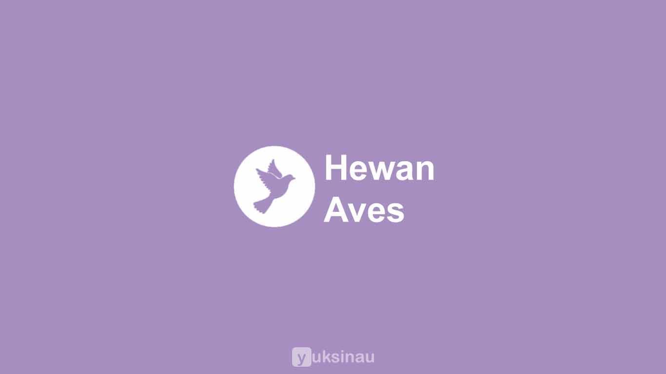 Hewan Aves
