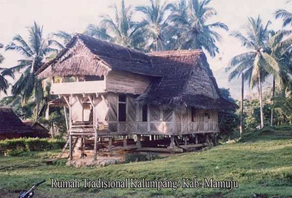 Rumah Adat Suku Kalumpang
