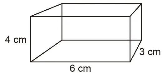 contoh soal jaring jaring balok