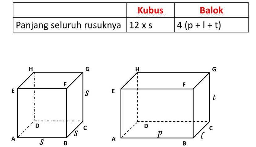 gambar balok dan kubus