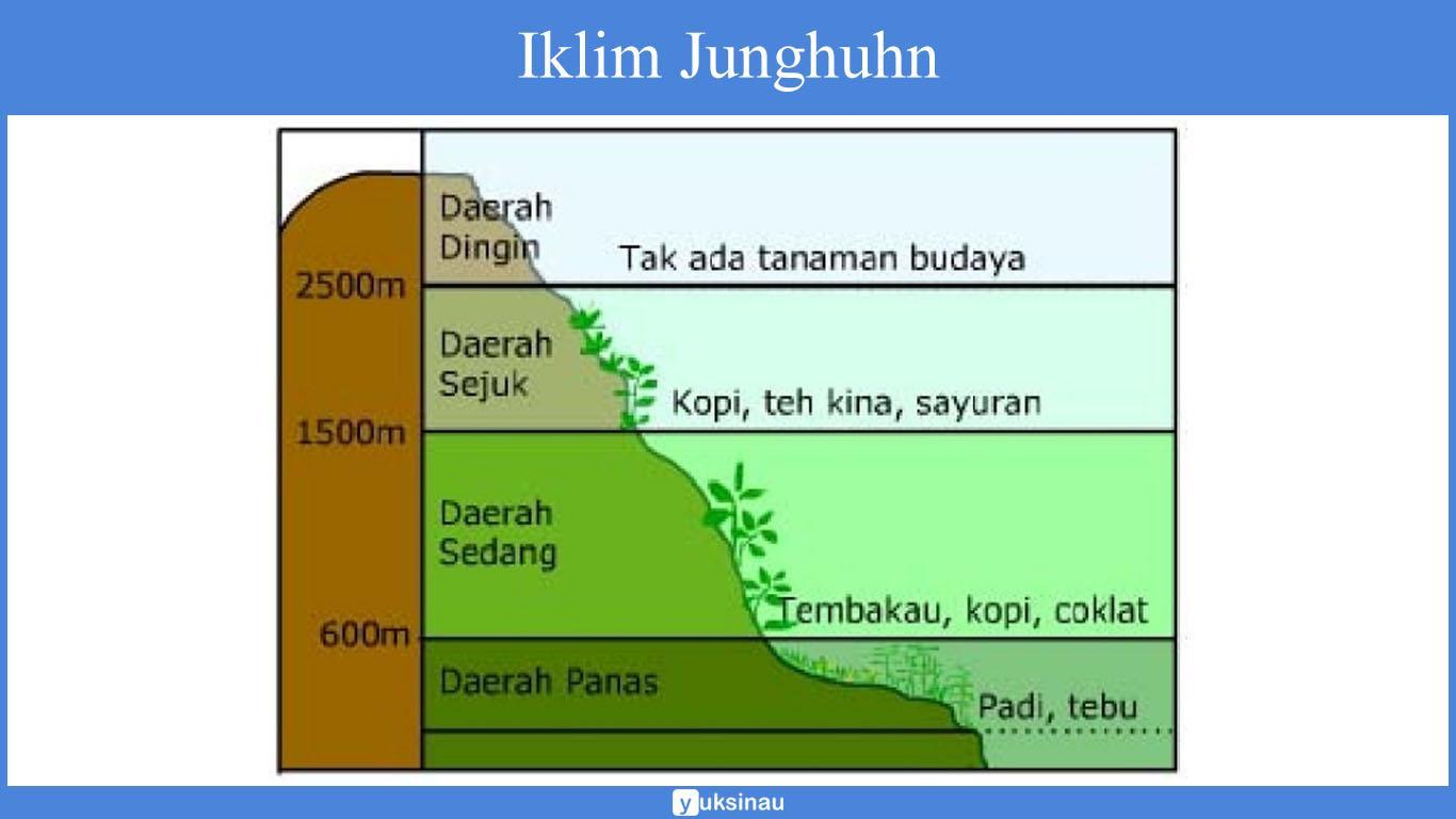 klasifikasi iklim matahari